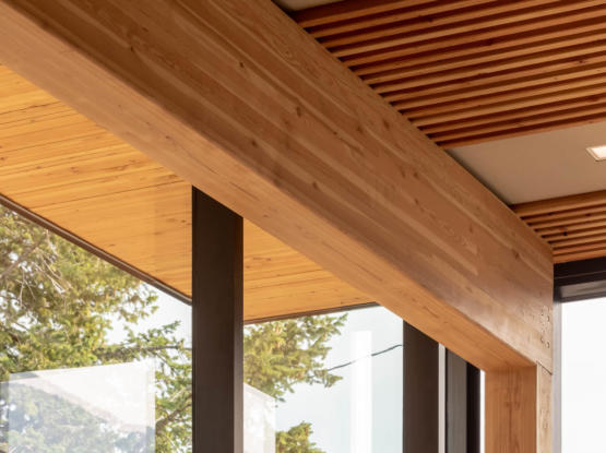 sustainable mass timber beams