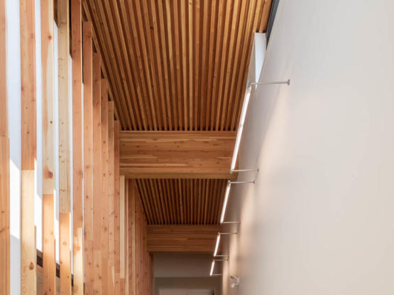 stacked dowel laminated timber DLT