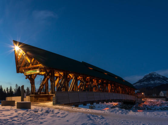 beautiful timberframe structural bridge
