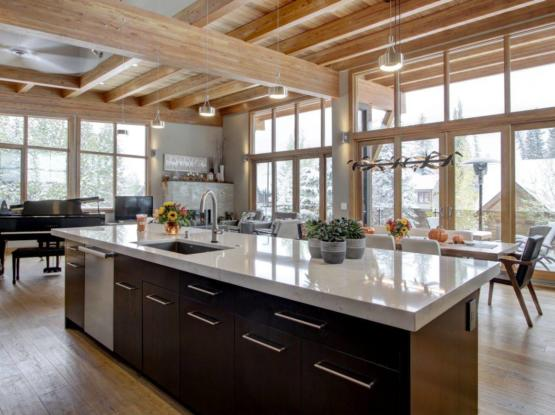 beautiful modern kitchen with timberframe components